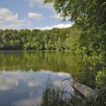 See im Wald, lake in the forest Naturpark Barnim - Barnim Nature Park, nahe Berlin